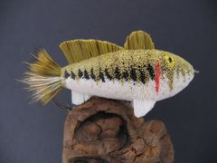Largemouth Bass - Mounted